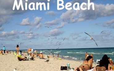Miami Beach Vacation Home Rentals by Owner